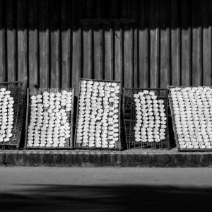 Rice cakes drying in the sun