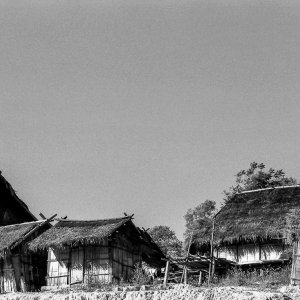 Thatched houses in village of Akha Tribe