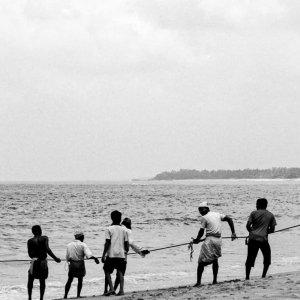 地引網を引っ張る漁師たち