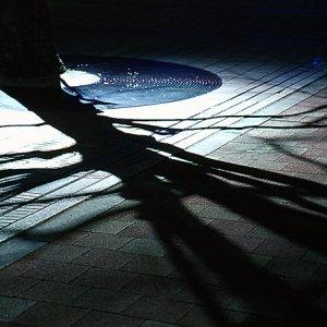 Shadow of tree on ground