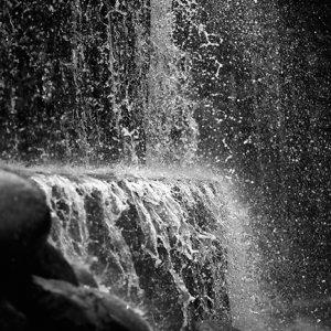 新宿中央公園の滝