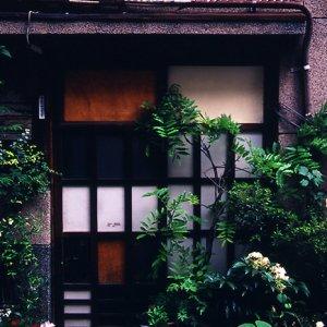 玄関先に植木鉢