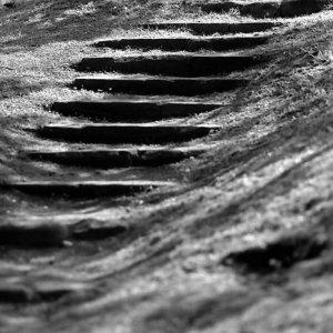 Shadow on steps