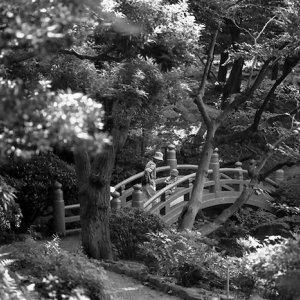 旧安田庭園の橋