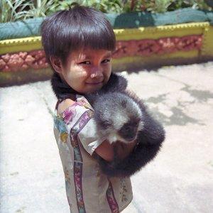 男の子と猿