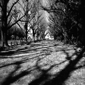 Deserted colonnade