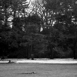 kid running on lawn