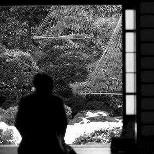 庭を眺める男