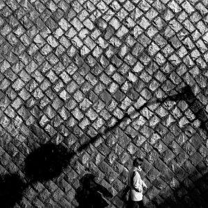道路標識の影