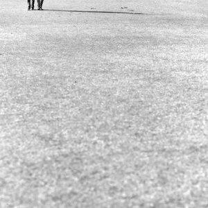 Couple on turf