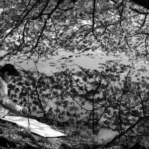 水辺の画家