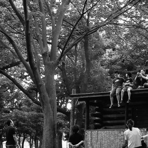 kids on the roof