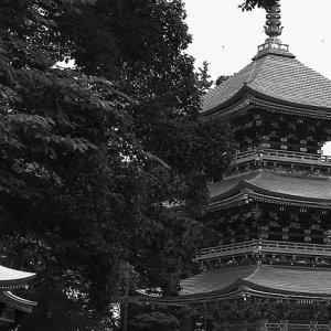 Three-storied pagoda