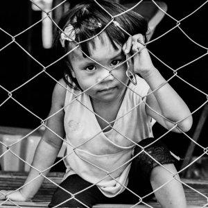 金網の向こうに座る女の子