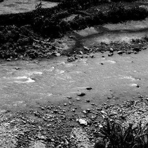 川沿いの水田で田植えする人影