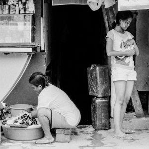 ペットを抱える女と洗濯する女
