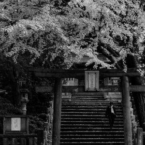 駒込稲荷神社の鳥居