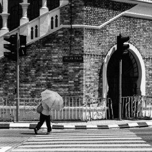 日傘を差して道を渡る女性