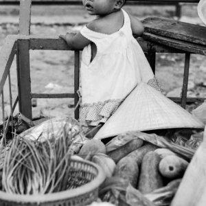 野菜と一緒にリヤカーに載せられた赤ん坊