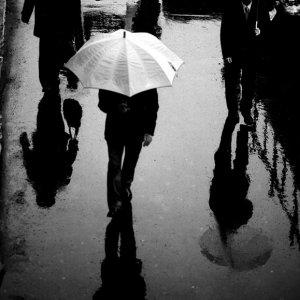 路面に映る歩行者の姿