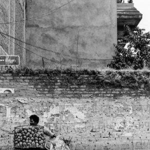 Mango seller standing against wall