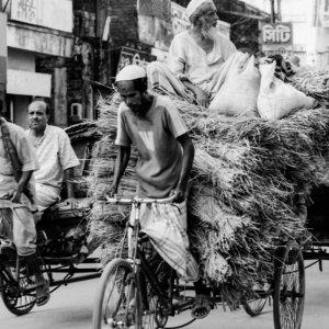 Cycle rickshaw with huge burden