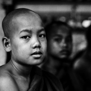Young Buddhist monk wearing Kasaya