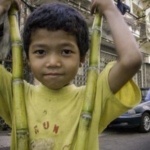 Boy holding sugar canes