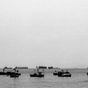 Fishing boats off shore