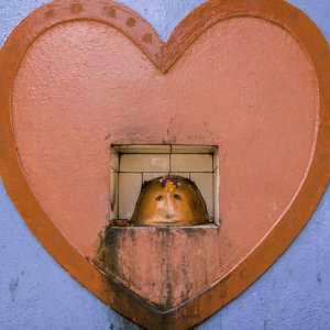 Ganesha in heart