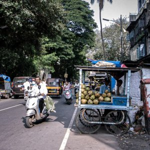 Coconut stand by roadside