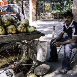 Man selling coconuts by roadside