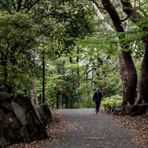 Old man taking a walk in Rinshi No Mori Park