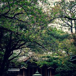 Main hall in Yuten-Ji