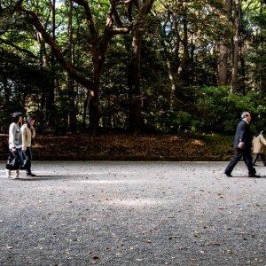 People walking approach