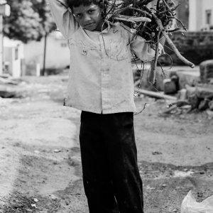 薪を運ぶ男の子