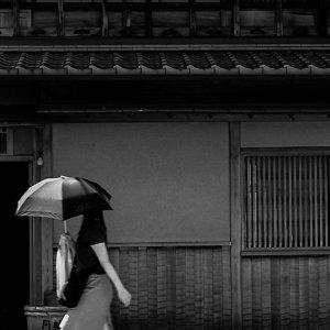 黒い日傘の女