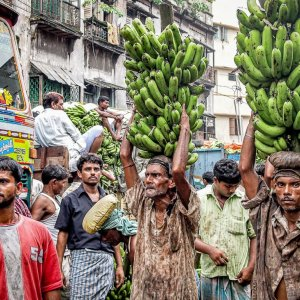Men carrying bananas