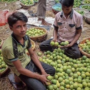 Men selling and buying orange