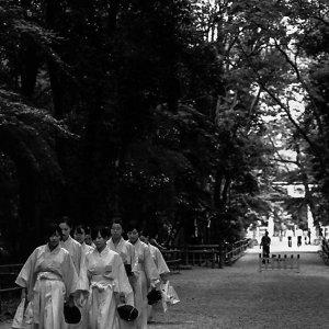 Shinto priestesses in Shimogami Jinja