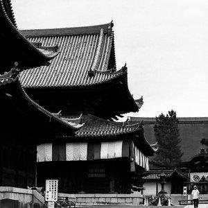 妙心寺の境内