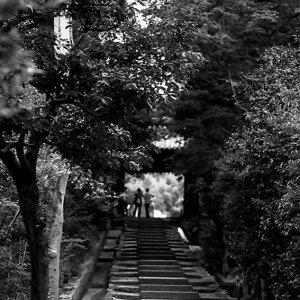 高台寺の階段