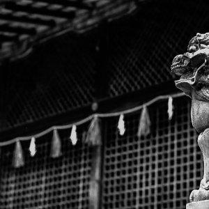 guardian dog in Ujigami Jinja