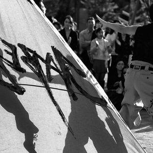 shadows on flag