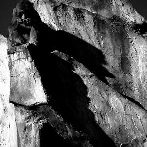 Monkey on top of rock mountain