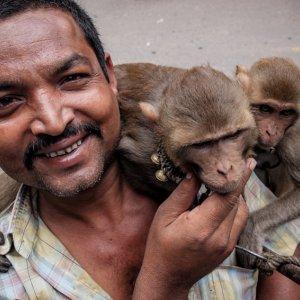猿を連れて散歩していた男