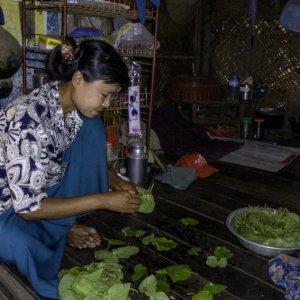 キンマの葉を並べる女