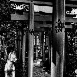 平河天満宮の狐の像
