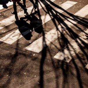 Shadows on ground