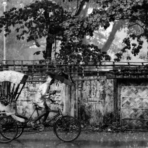 Cycle rickshaw running in rain